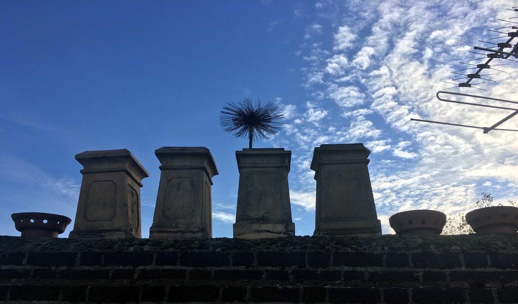 Brush in chimney